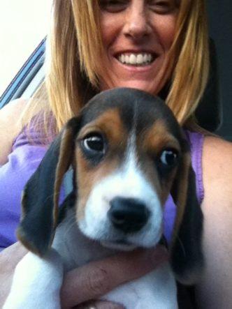 Puppy Wyatt on the ride home.
